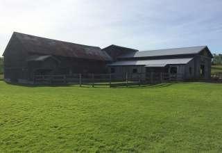 Windy Westerlo Farm