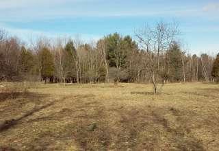 Hidden Meadow Camping