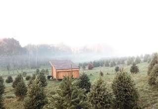 The Tree Farm Garden Apartment
