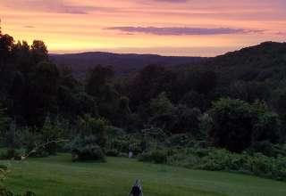 Mickelberry Forest Gardens