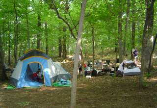 Bears Den Campground
