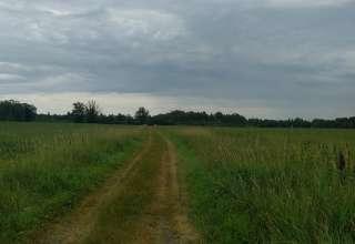 Agora Farm