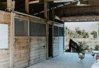 Off-Key Farm