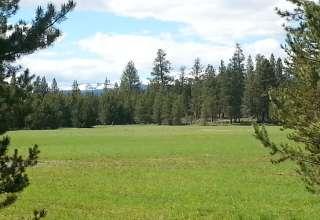 9 Corners Ranch