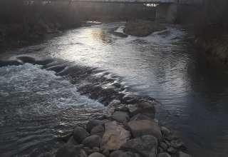 Picketwire Valley Riverbottoms
