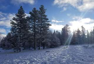Cedar Canyon Ranch
