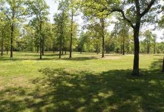 The Oaks Lake Fork