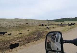 Hay Zee Mountain Ranch