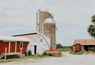 Gilles Family Dairy & Woodland