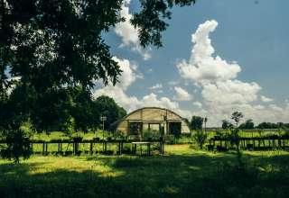 Louisiana Plantation River Bank