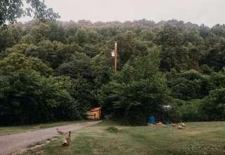 Holler Homestead Woodsy Retreat