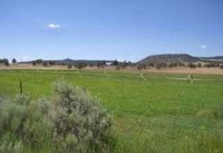 Peaceful Meier Ranch