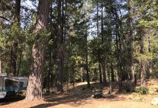 Sainte Fluer Farm-Jackson Camp