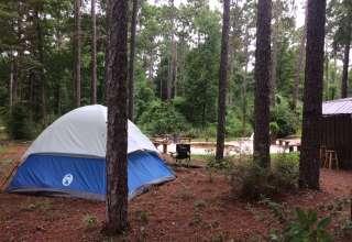 Pinewood Camping / Glamping