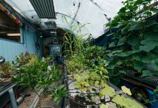 Bent Pickle Organic Farm/Diner