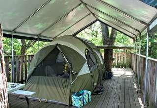 John 15 Vineyard Tree Camping