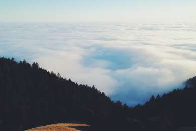 Above the fog atop Mt. Tamalpais!