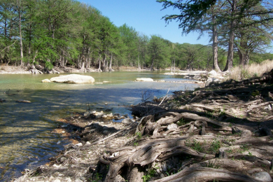 Cypress Springs Group Campground