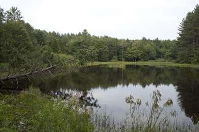 Gilbert Lake Cabin Colony