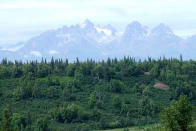 Denali View North