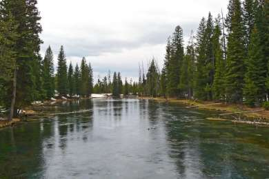 McKay's Bend Recreation Site Campground