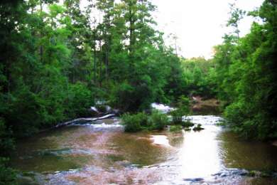 Kisatchie Bayou Campground