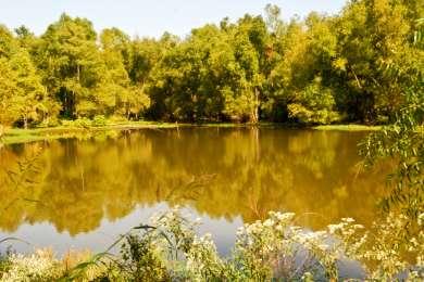 Ivan Lake Recreation Area