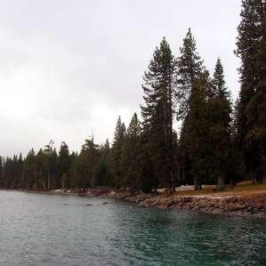 Sugar Pine Point