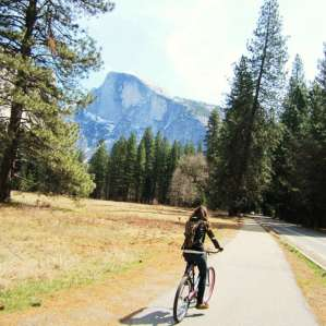 Upper Pines Campground, Yosemite, CA: 54 Hipcamper Reviews And 104