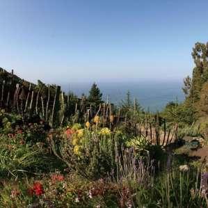 Big Sur Mt Retreat