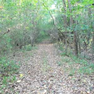 Old Burleson Camp