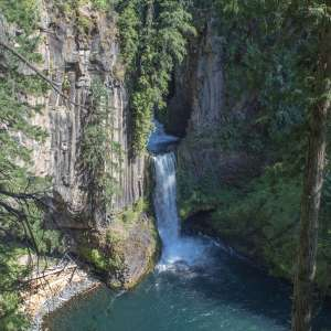 Umpqua National Forest