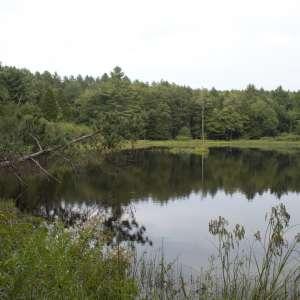 Gilbert Lake State Park