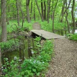 Rice Lake State Park