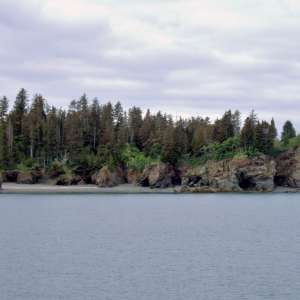 Kachemak Bay State Park and State Wilderness Park