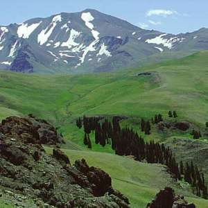 Shoshone National Forest