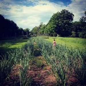 Humble Hill Farmstay