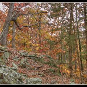 Graham Cave State Park