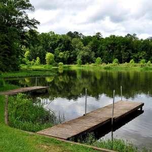 Roland Cooper State Park