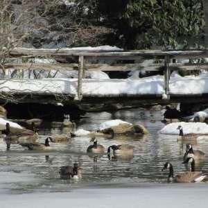 Little Beaver State Park