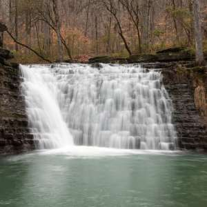 Ozark-St. Francis National Forests