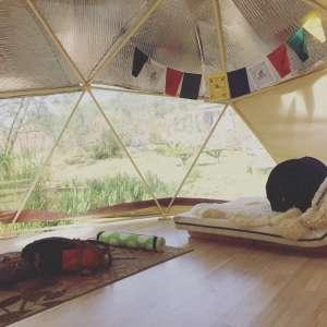 Pat and Kamala's geodesic dome