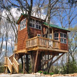 Tree Houses And Cabin
