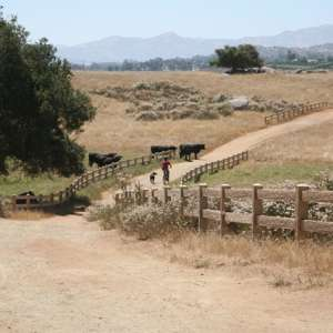 Knightsview Farm In Ramona
