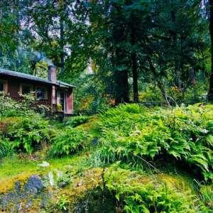 Trout Creek Wilderness Ranch