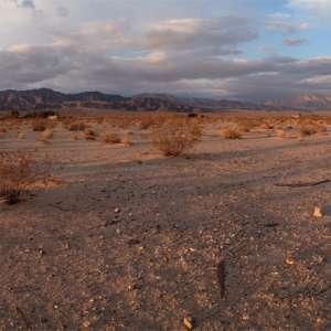 Wonder Valley Domes