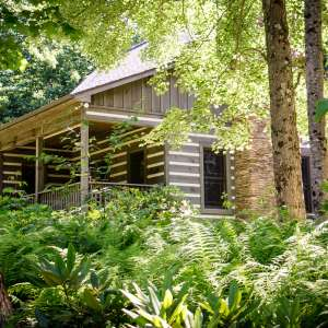 Cabin at Magic Tree Sanctuary