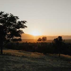 Wasioja Ranch