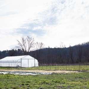 Just Ripe Farm