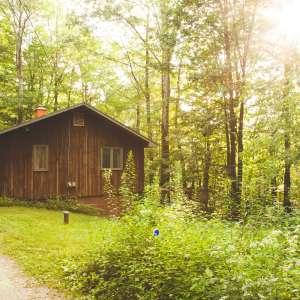Whitman Woods in the Berkshires